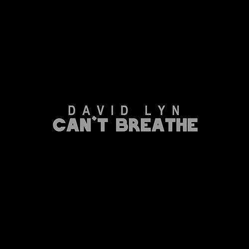 Can't Breathe by David Lyn