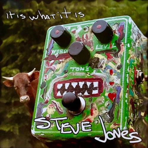 It Is What It Is by Steve Jones