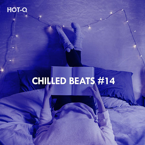 Chilled Beats, Vol. 14 by Hot Q