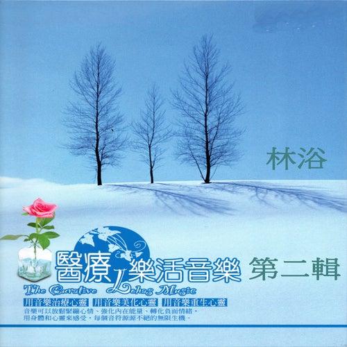 醫療 樂活音樂 林浴 第二輯 (用音樂治療心靈 用音樂美化心靈 用音樂重生心靈) by Mau Chih Fang