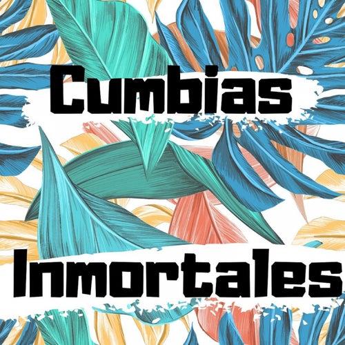 Cumbias Inmortales by Armando Hernandez, Fito Olivares Y Su Grupo, Los 50 De Joselito, Los Gaiteros De San Jacinto, Tropical Del Bravo