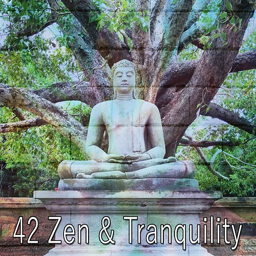 42 Zen & Tranquility de Massage Tribe