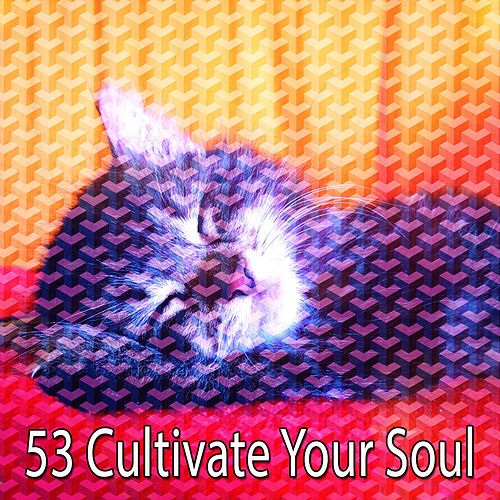 53 Cultivate Your Soul de Sounds Of Nature