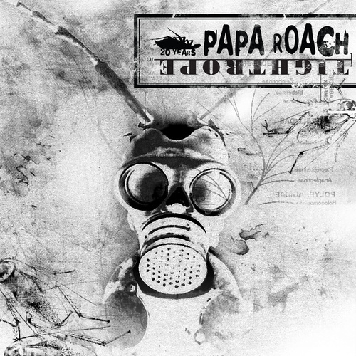 Tightrope 2020 by Papa Roach