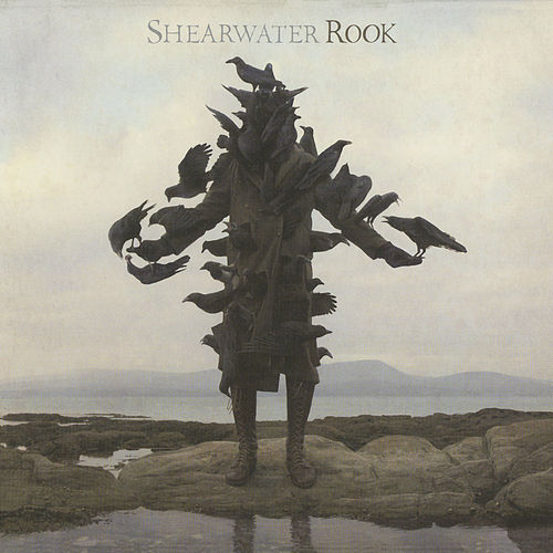 Rook by Shearwater
