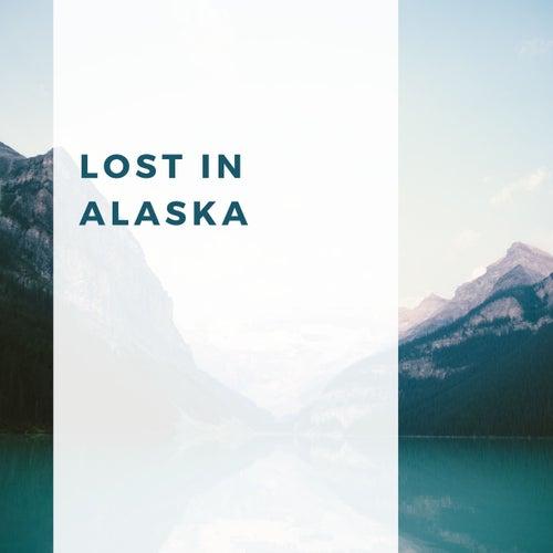 Lost in Alaska von Ocean Bank