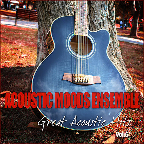 Great Acoustic Hits Vol. 6 by Acoustic Moods Ensemble