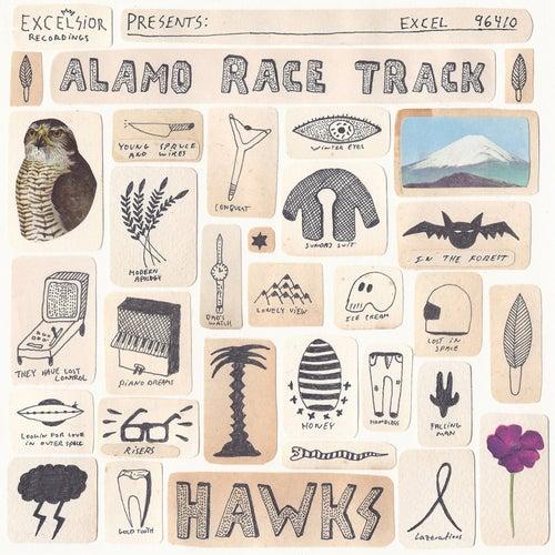 Hawks by Alamo Race Track