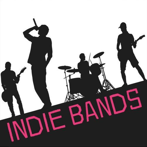 Indie Bands de Various Artists