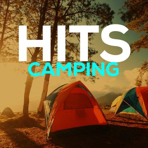 Hits Camping de Various Artists