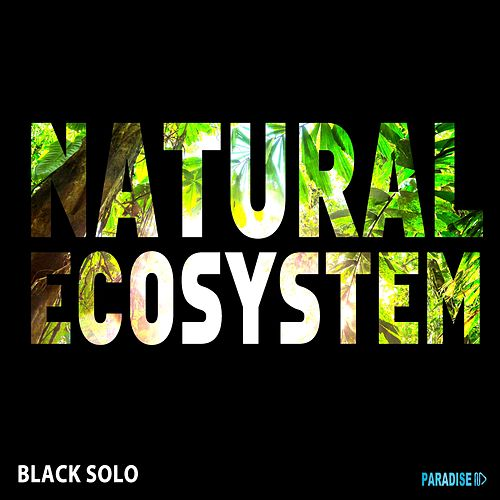 Natural Ecosystem by Black Solo