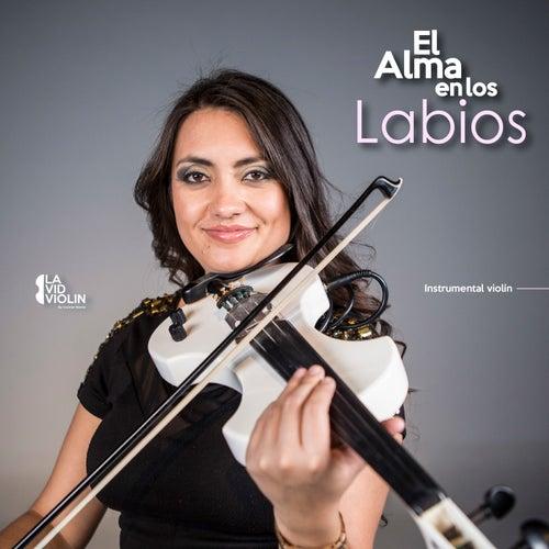 El Alma en los Labios (Instrumental) by La Vid Violin