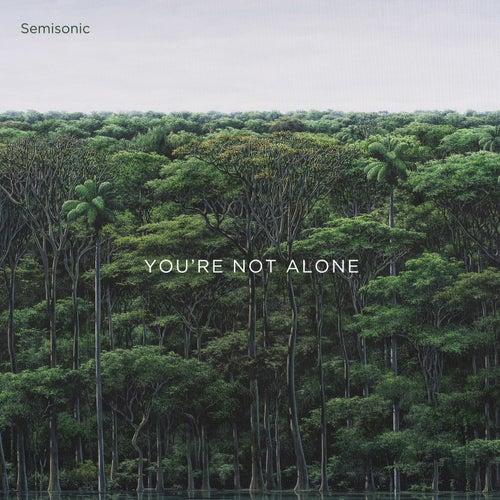 All It Would Take von Semisonic