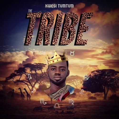 The Tribe Album by Kwesi TumTum