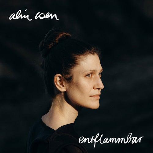 Entflammbar by Alin Coen