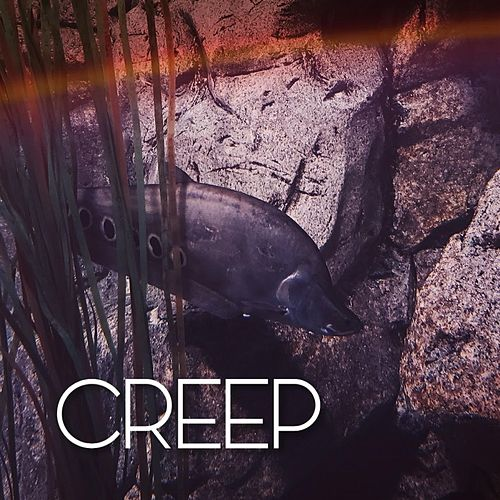 Creep von Jefferson Cardoso