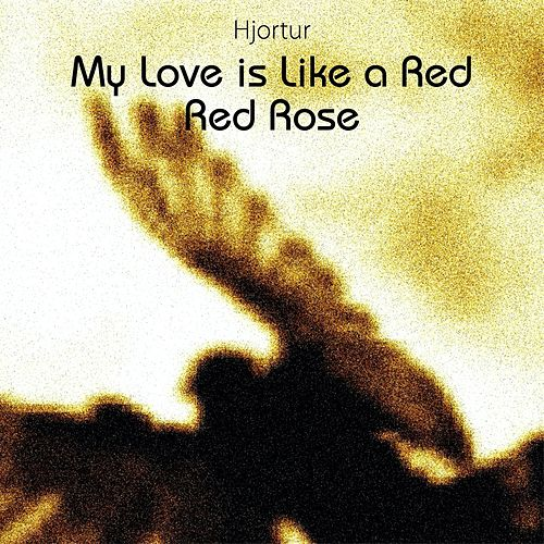 My Love Is Like a Red, Red Rose by Hjortur