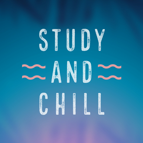 Study and Chill von Various Artists