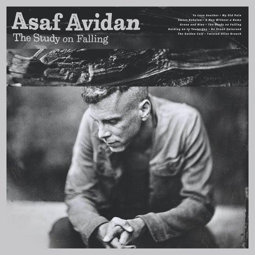 The Study on Falling by Asaf Avidan