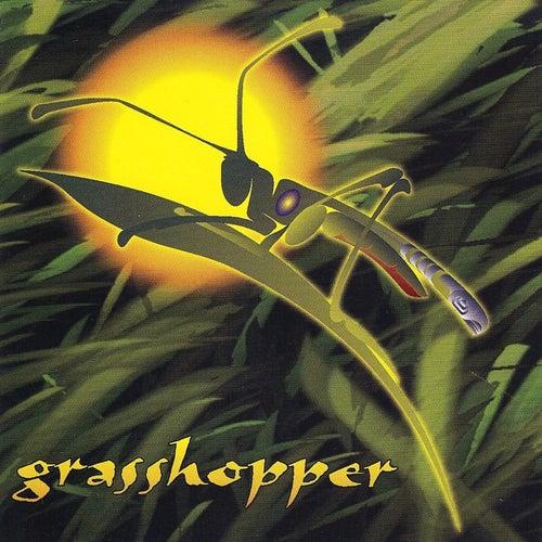 Grasshopper de Grasshopper