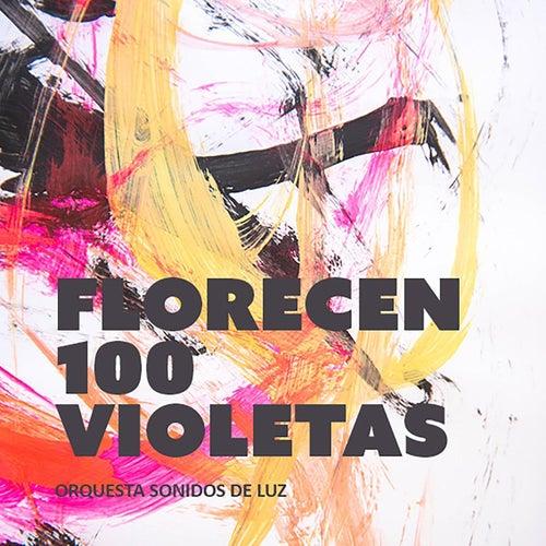 Florecen 100 Violetas by Orquesta Sonidos de Luz