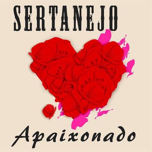 Sertanejo Apaixonado de Various Artists