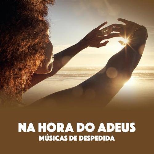 Na Hora Do Adeus: Músicas De Despedida de Various Artists