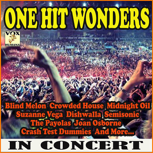 One Hit Wonders in Concert (Live) de Various Artists