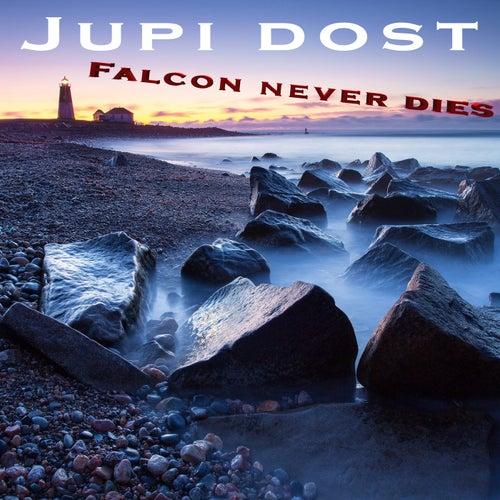 Falcon Never Dies von Jupi Dost