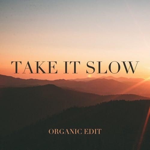 Take It Slow (Organic Edit) by Michael Lane