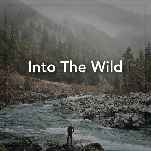 Into The Wild by Various Artists