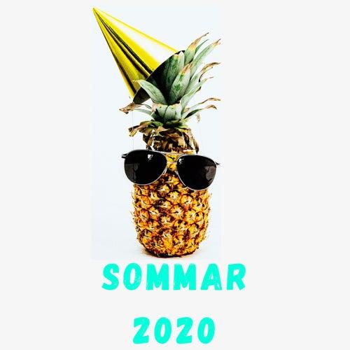 Varm Sommar 2020 von Various Artists