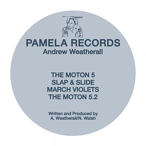 Pamela #1 by Andrew Weatherall