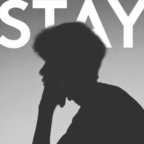 Stay by John Derek