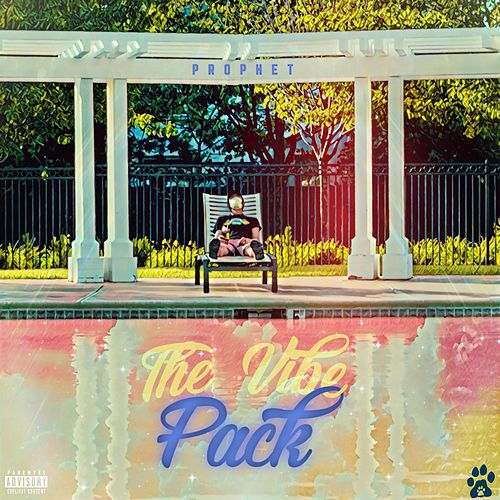 The Vibe Pack by Prophet