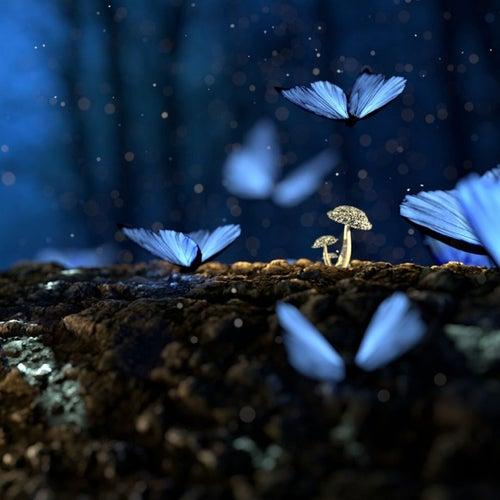 Melodías Ambientales para Dormir de Musica Para Dormir y Aliviar El Estrés, Sonidos De La Naturaleza, Sonidos del Bosque Para Aliviar el Estres y Calmar Los Animos, Melodias Para Dormir Profundamente, Sonidos De Lluvia En El Bosque, Sonidos de lluvia para dormir en la tarde