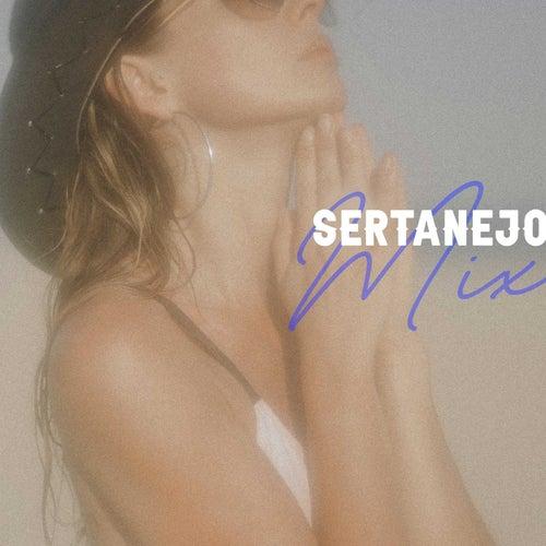 Sertanejo Mix de Various Artists