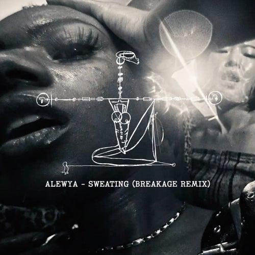 Sweating (Breakage Remix) by Alewya