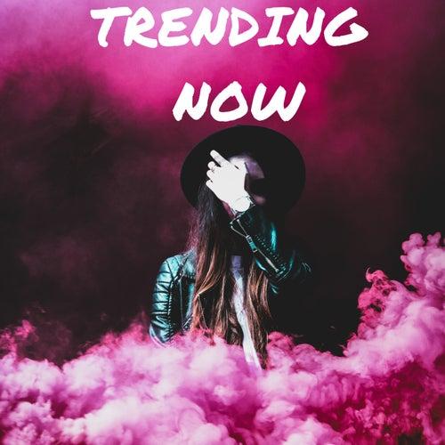 Trending  Now van Various Artists