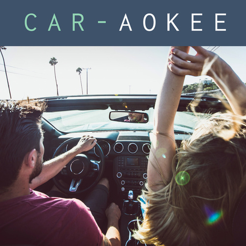 Car-aokee by Various Artists