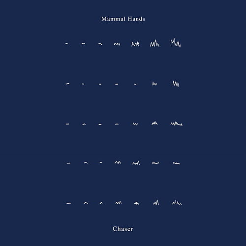 Chaser by Mammal Hands