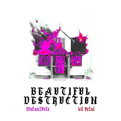 Beautiful Destruction de Lil Petal
