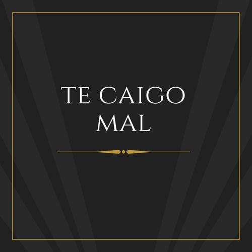 Te Caigo Mal by Hernandez Armando