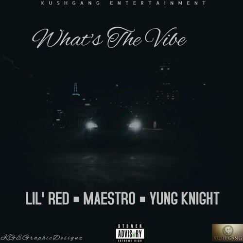 What's The Vibe von Maestro