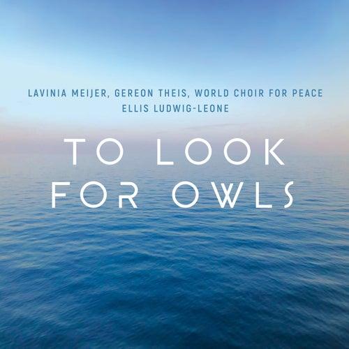 To Look for Owls von Lavinia Meijer