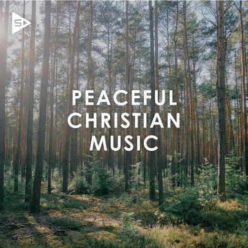 Peaceful Christian Music de Various Artists