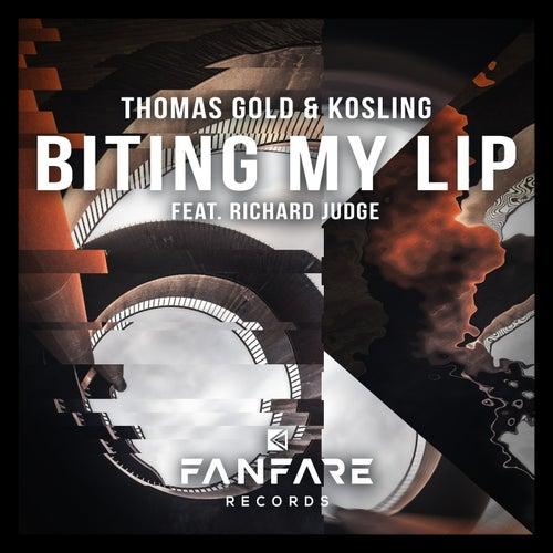 Biting My Lip by Thomas Gold