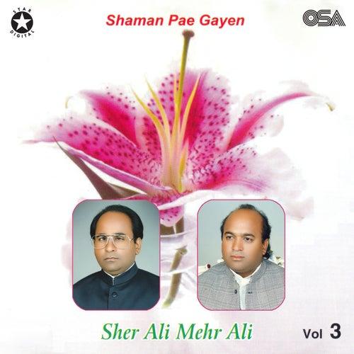 Shaman Pae Gaiyan, Vol. 3 by Sher Ali