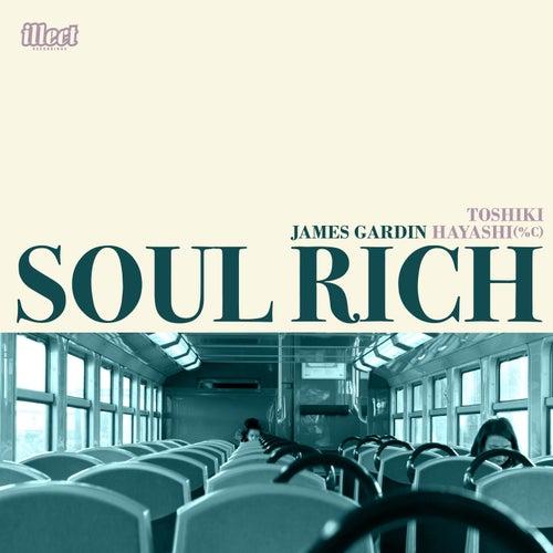 Soul Rich by James Gardin