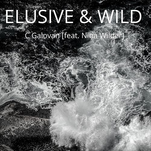 Elusive & Wild (feat. Nina Wilder) by C Galovan